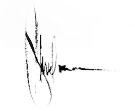 Sign of Igor Shulman