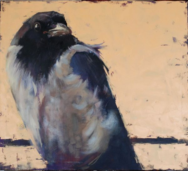 The World of Birds. Crow Louise